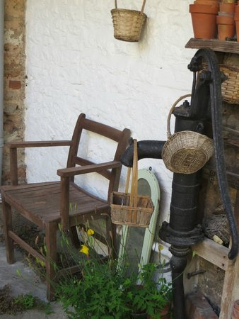 Paradise House B & B: A quirky corner of the garden