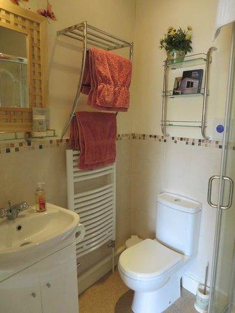 Paradise House B & B: En-suite shower room
