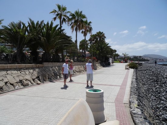 Hotel Riu Palace Tenerife : Promenade from the hotel grounds