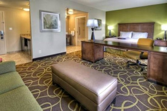 Hampton Inn & Suites Rochester / Henrietta: King Studio Suite