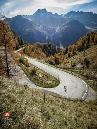 Holimites - Holiday into the Dolomites: Holimites is also road cycling