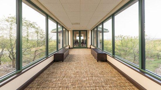 Chickasaw Retreat & Conference Center: Sky Walk
