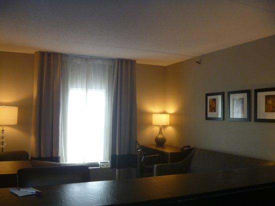 كومفورت سويتس باينفيل: Living Room(Select Suites)