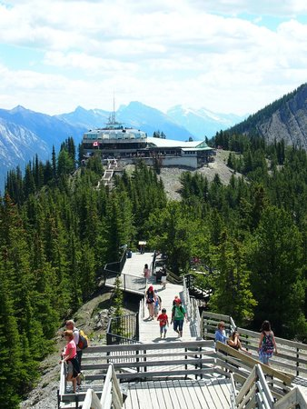 Banff Gondola : Nice path on the top you can walk along.