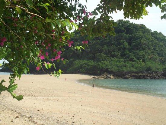 Taboga Island Beaches : Taboga