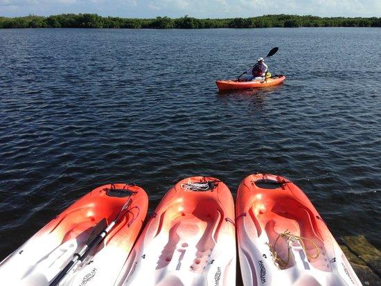 Sian Ka'an Biosphere Reserve : Un paseo en kayac por la Laguna Negra