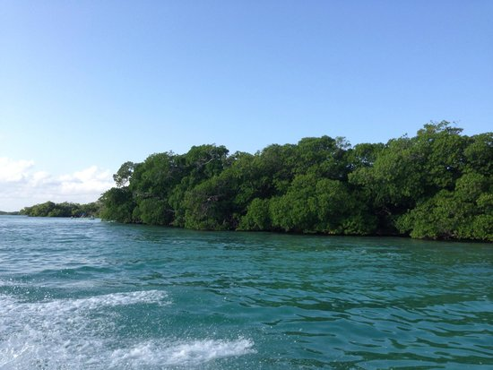 Sian Ka'an Biosphere Reserve : Un lugar hermoso
