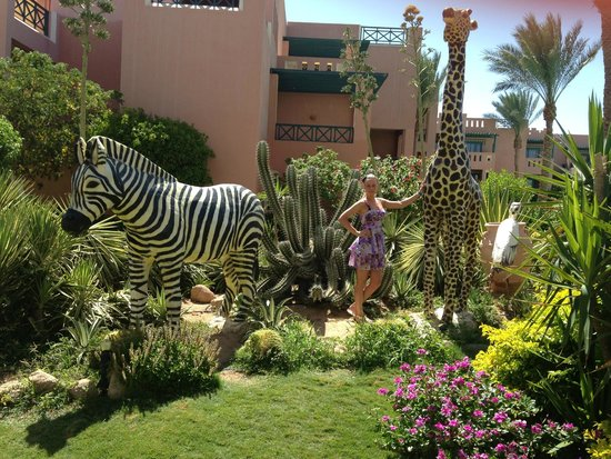 Rehana Sharm Resort: Территория отеля