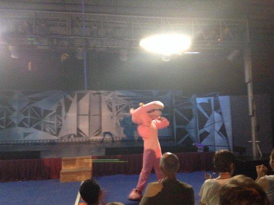 Canto Del Sol Plaza Vallarta: La pantera rosa en el show!!! Buenísima!!!!
