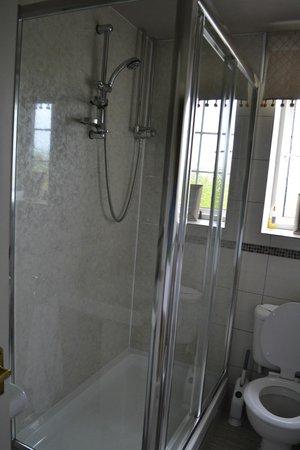 Knabbs Ash Bed & Breakfast: Spacious shower