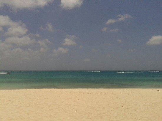 Eagle Beach: Uitzicht