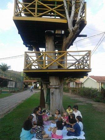 Hotel Fazenda Hipica Atibaia : Casa da Árvore