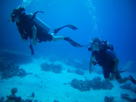 New Son Bijou Diving Center : Honeymoon diving :-)