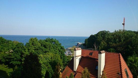 Hotel Rozany Gaj: Utsikten