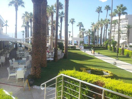 Ideal Prime Beach : Hotel's area