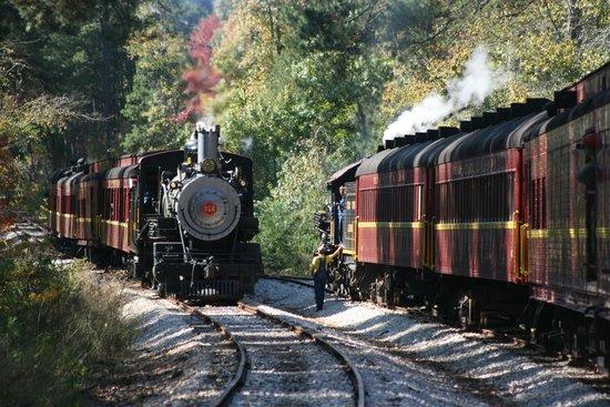 Palestine Texas Railways