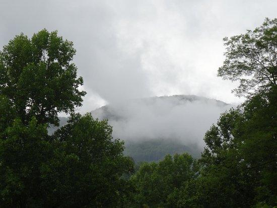 Balsam Mountain Inn & Restaurant: View from the Porch