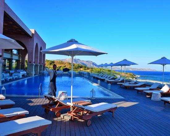 Boutique 5 Hotel & Spa: Pool and happy bartender