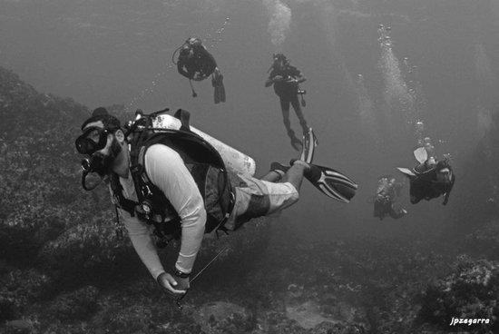 Encanto Divers