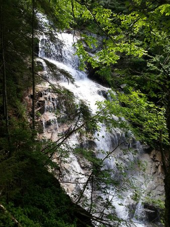 Franconia Notch State Park: Falling Waters Trail