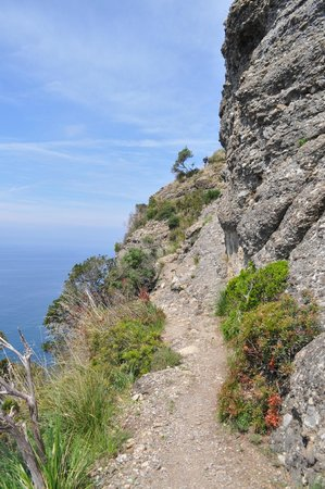Villa Rosmarino : cliff walk