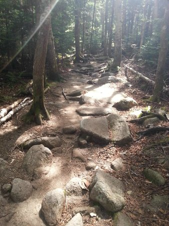 Franconia Notch State Park: Lonesome Lake Trail