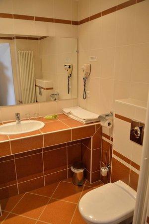 Hotel Grillon: sink, plenty of space