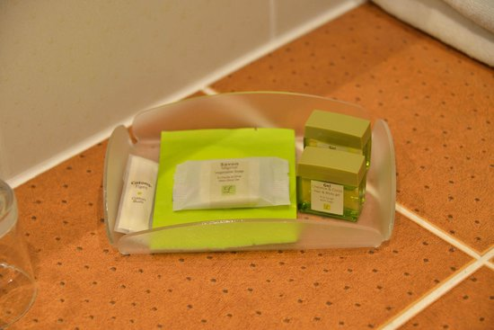 Hotel Grillon: amenities