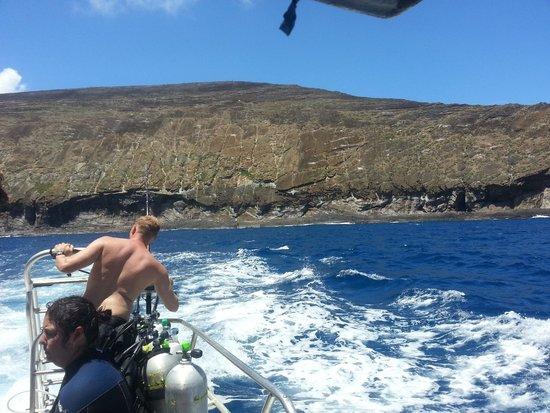 Seasport Divers: Lehua