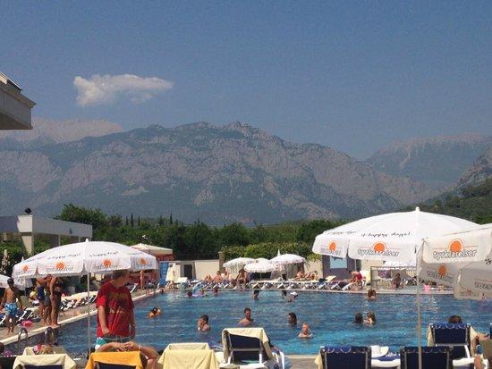 Viking Star Hotel : pool area