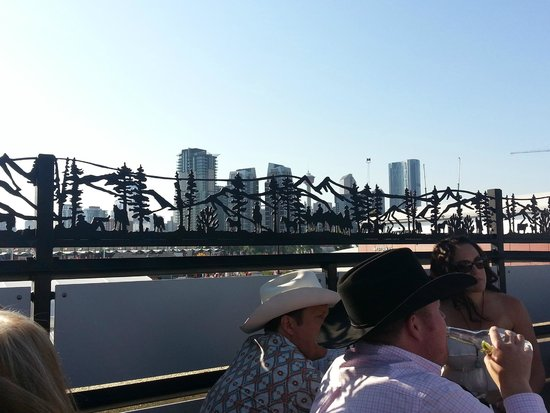 Calgary Stampede: Downtown from VIP