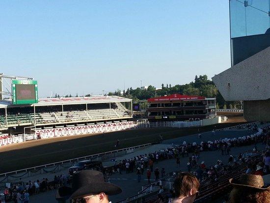 Calgary Stampede: Chuck wagon races
