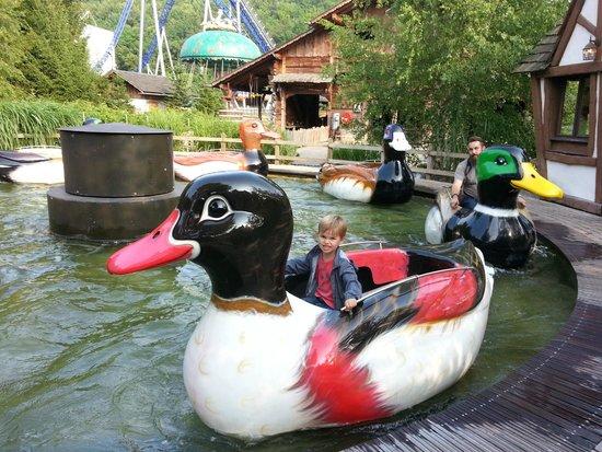 Nigloland : La ronde des canards