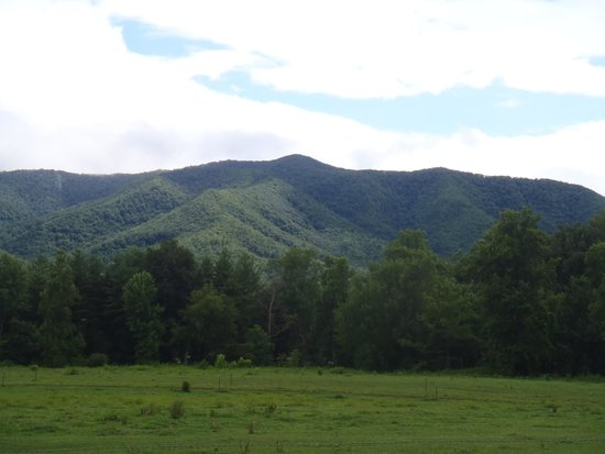 Cades Cove Visitor Center : What a View!
