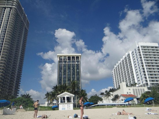 Miami Beach Resort and Spa: hotel desde la playa