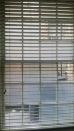 1905 Basin Park Hotel: Our view from the bathroom. More AC units and random frosted panels of glass.