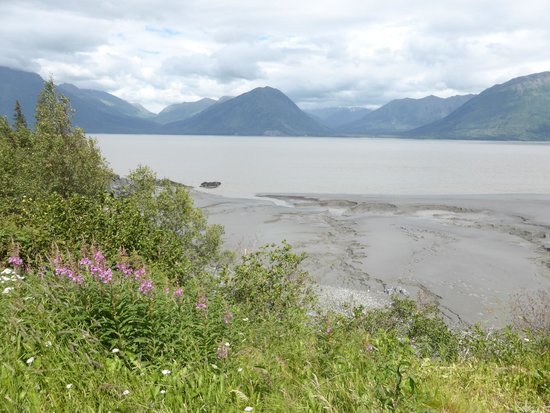 Bowman's Bear Creek Lodge: Turnagain Arm fmudflats near Hope, AK - waiting to see the Boretide!