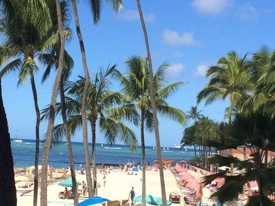 Hula Grill Waikiki : Breakfast View