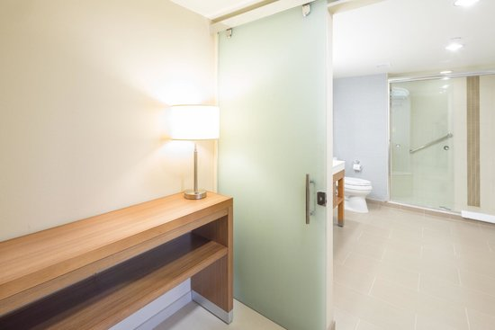 Hyatt Place Pensacola Airport : Bathroom