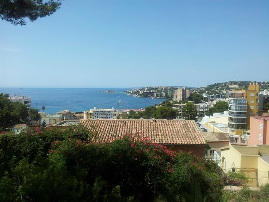 Pilar and Joan Miro Foundation in Mallorca: panoramic view