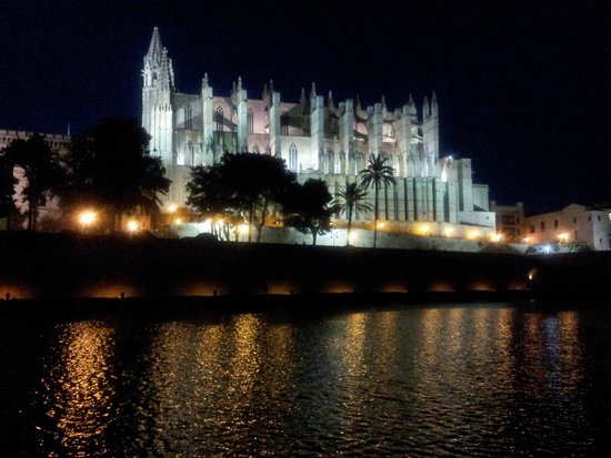 Palma Catedral Le Seu: night view