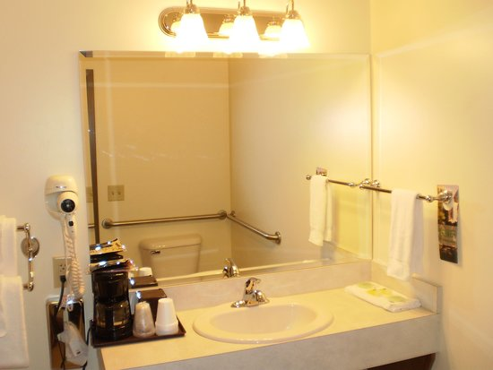 Hotel Millersburg: Handicap Room 215 bathroom view