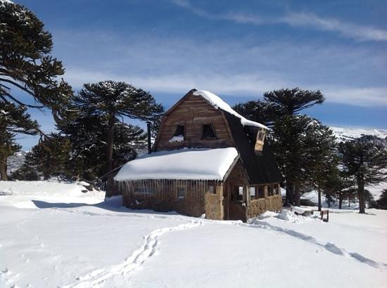 Las Lajas, الأرجنتين: Hermosa cabaña nevada
