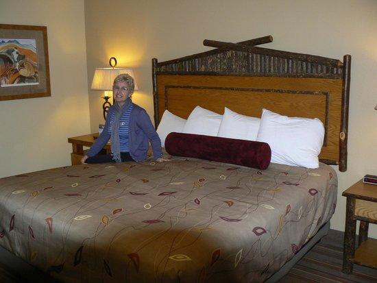 Denali Princess Wilderness Lodge: Ground level room