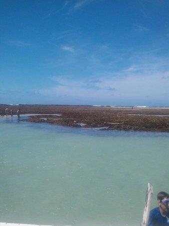 Salinas Maragogi All Inclusive Resort: Piscinas naturais