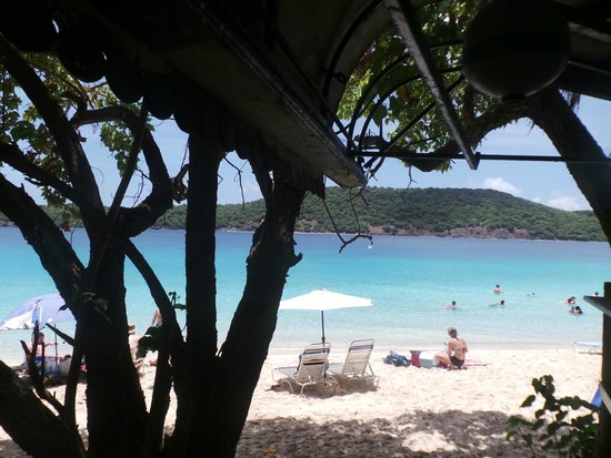 Coki Point Beach : View from Uncle Buddy's Burger and Drink Shack