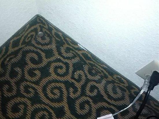 Best Western Wytheville Inn : That is a bottle cap in the corner