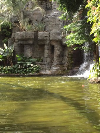 Gaylord Opryland Resort & Convention Center: On the boat ride