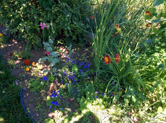 The Coffee Pot Bakery Cafe: The well-kempt garden next to the restaurant