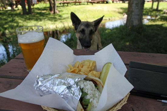 Terminal Gravity Brewery & Pub: My gyro was mostly lettuce and feta cheese